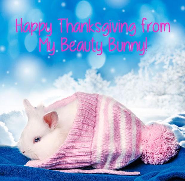Happy Thanksgiving My Beauty Bunny