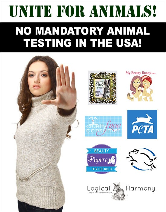 No Animal Testing in America