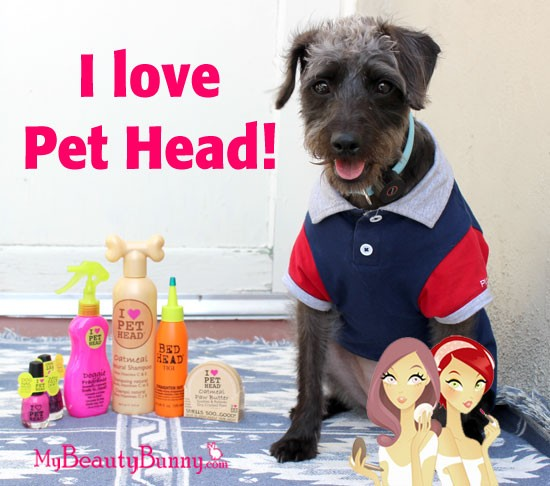 Pet Head Review