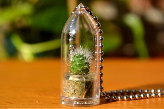 Wear it Mini Plants Cactus Necklace