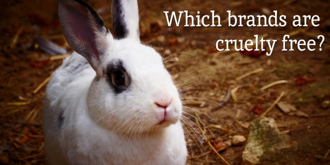 Cruelty Free Brands